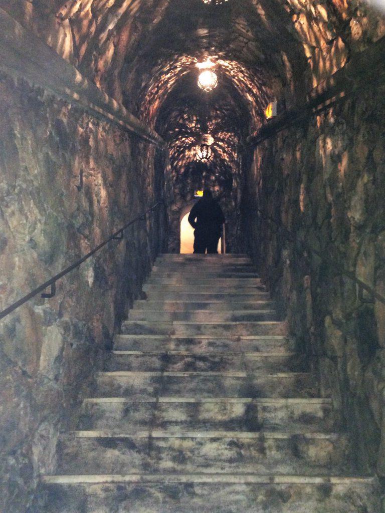 cave-vignoble