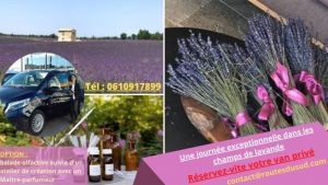 excursion in the lavender fields, plateau of Valensole with optional perfume creation workshop